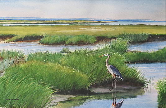 Spring Marsh by Karol Wyckoff