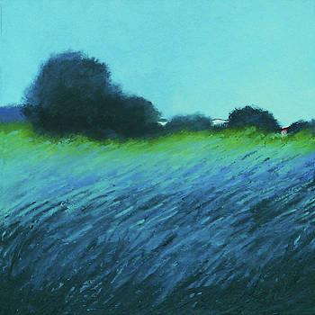 Spring Meadow by Sheila Psaledas