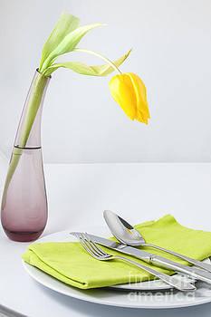 Patricia Hofmeester - Spring meal