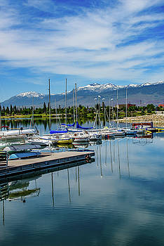 Spring Morning at Sparks Marina by Janis Knight