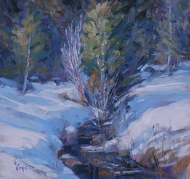 Spring Runoff by Gary Gore