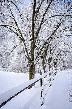 Spring Snow by Andrew Kazmierski