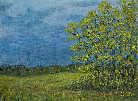 Spring Storm - Spring Leaves by Kathleen McDermott
