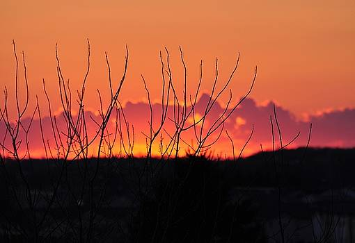 Spring Sunset 1 by Diana Nigon