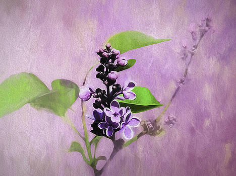 Spring Time Lilac by Diane Schuster