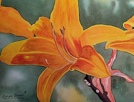 Spring Time Lily by Brenda Brown