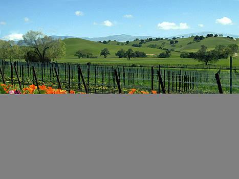 Kurt Van Wagner - Spring view at Rusack Vineyards