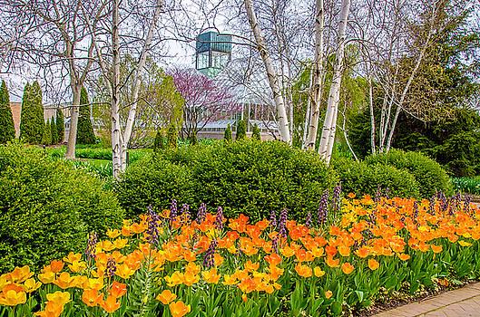 Julie Palencia - Springtime at the Chicago Botanic Garden