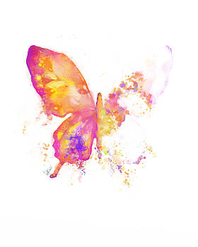 Springtime Butterfly by Cindy Elsharouni