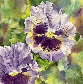 Alfred Ng - springtime for pansies