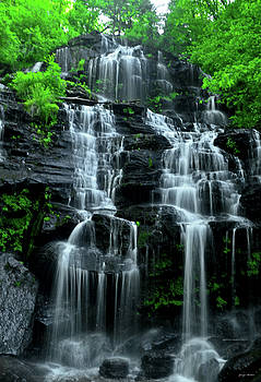 Springtime - Issaqueena Falls 002 by George Bostian