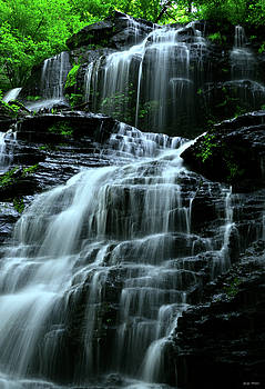 Springtime - Issaqueena Falls 003 by George Bostian