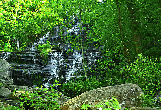 Springtime - Issaqueena Falls 004 by George Bostian