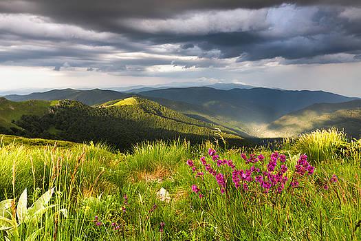 Springtime Mountain by Evgeni Dinev