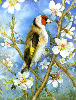Natalie Berman - Springtime