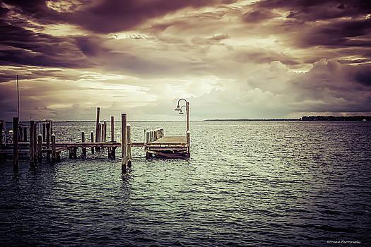 St Andrews Marina 2 by Debra Forand