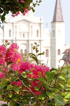 St. Louis Cathedral Jackson Square New Orleans by Deborah Squires
