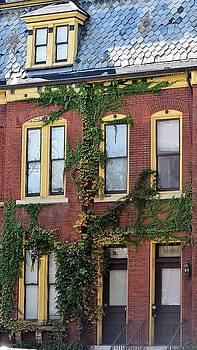 St Louis Brownstones by John Glass