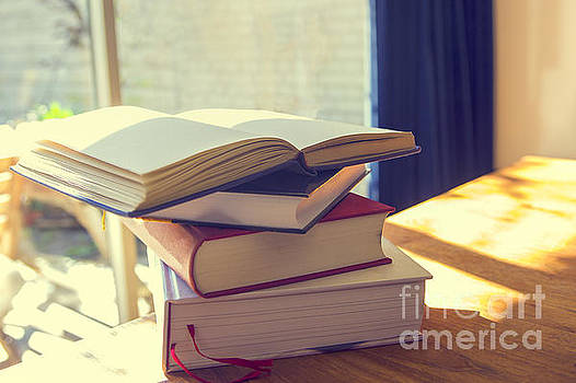 Patricia Hofmeester - Stack of books in sunlight
