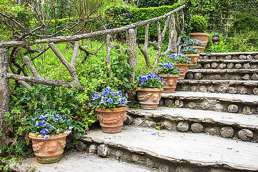 Stairway and Flower Pots by Zina Zinchik