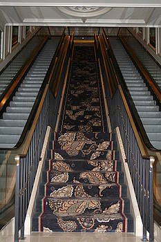 Stairway to Heaven by Shelly Davis