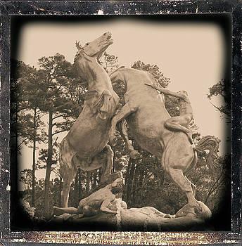 Stallions by Cathy Harper