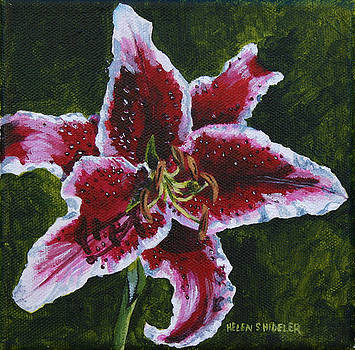 Star Fighter Lily by Helen Shideler