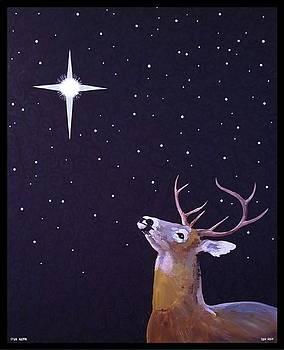 Star Gazer by Jim Harris