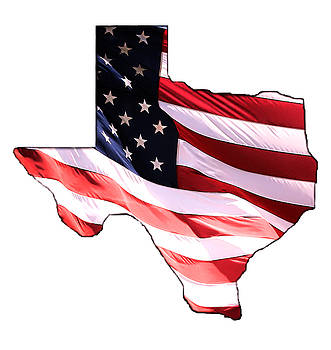 Star Spangled TEXAS by Athena Mckinzie
