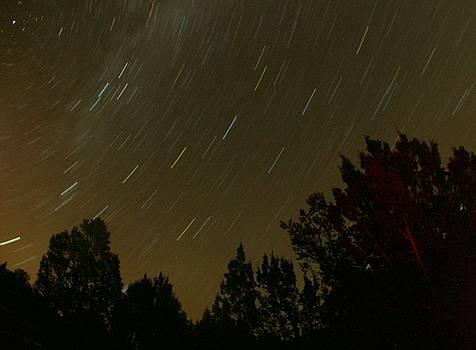 Star Tripping by David S Reynolds