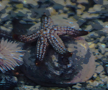 Starfish in blue neon by Laurie Pike