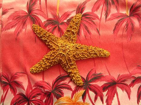 Starfish by MaryEllen Frazee