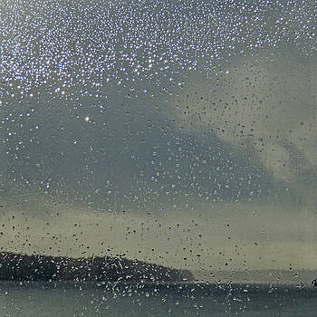Starry Day by Sally Banfill