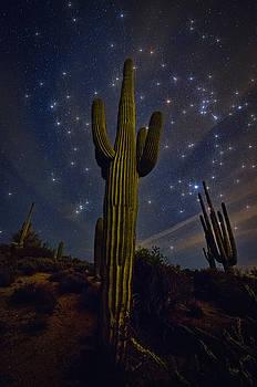 Saija  Lehtonen - Starry Desert Skies