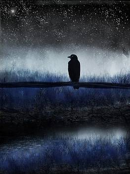 Starry Eyed Crow by Gothicrow Images