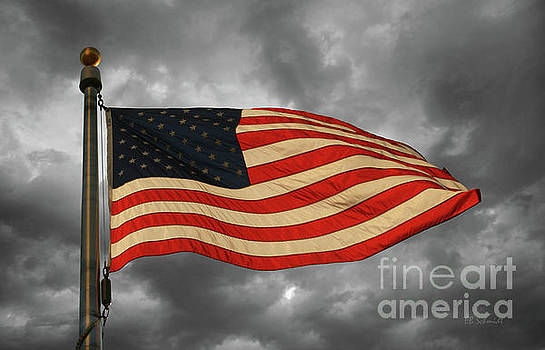 Stars and Stripes by E B Schmidt