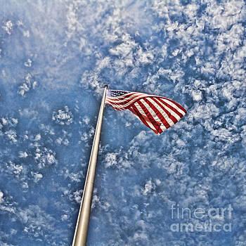 Scott Pellegrin - Stars and Stripes