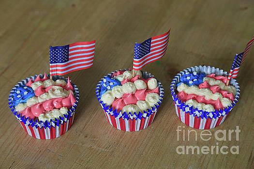 Stars and Stripes by Tracy Hall