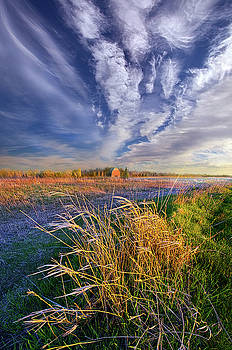 State of Mind by Phil Koch