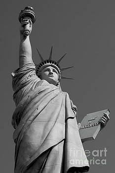 Statue of Liberty by Ivete Basso Photography