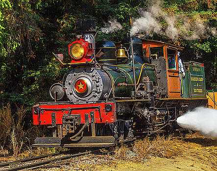 Steam Train Dixiana by Garry Gay