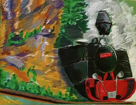 Steam train by Manuela Constantin