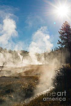 Birches Photography - Steamy Sunrise