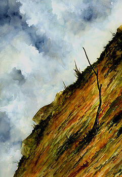 Steep Slope by Michael Vigliotti