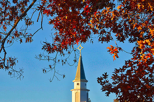 Steeple by Linda Brown