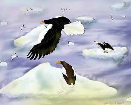 Stellar Sea Eagle Island by Mike Sexton