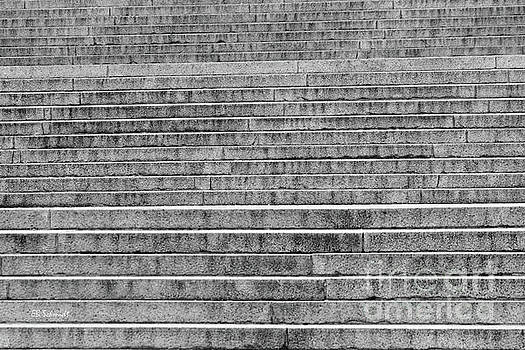 Steps to the Lincoln Memorial by E B Schmidt