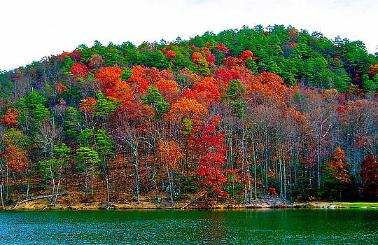 Still Fall in the Valley by E Robert Dee