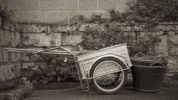 Still Life Geneva by Colleen Williams