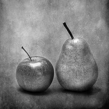 Still Life by Kathi Mirto